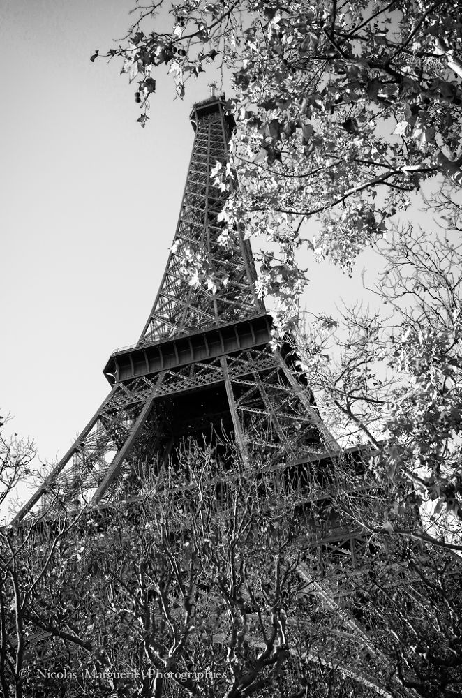 Photo in Architecture #france #paris #tour eiffel #monuments #architecture #noir et blanc #black and white