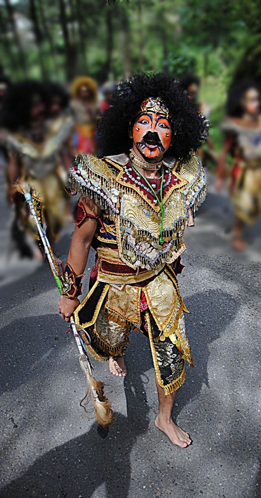 Dancer horse braid by haridi