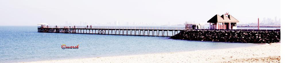 seaside by Marsh Reginald Sardea