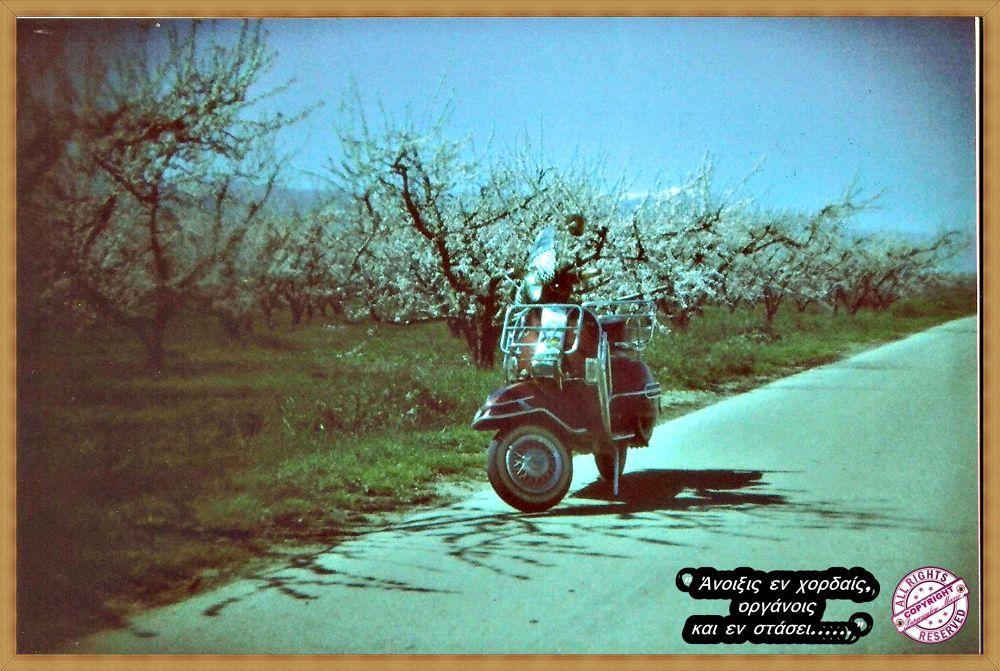"""HOLGA 135 BC"" Analog Kamera / Film:""KODAK ColorPlus 200"" by citbx1989"