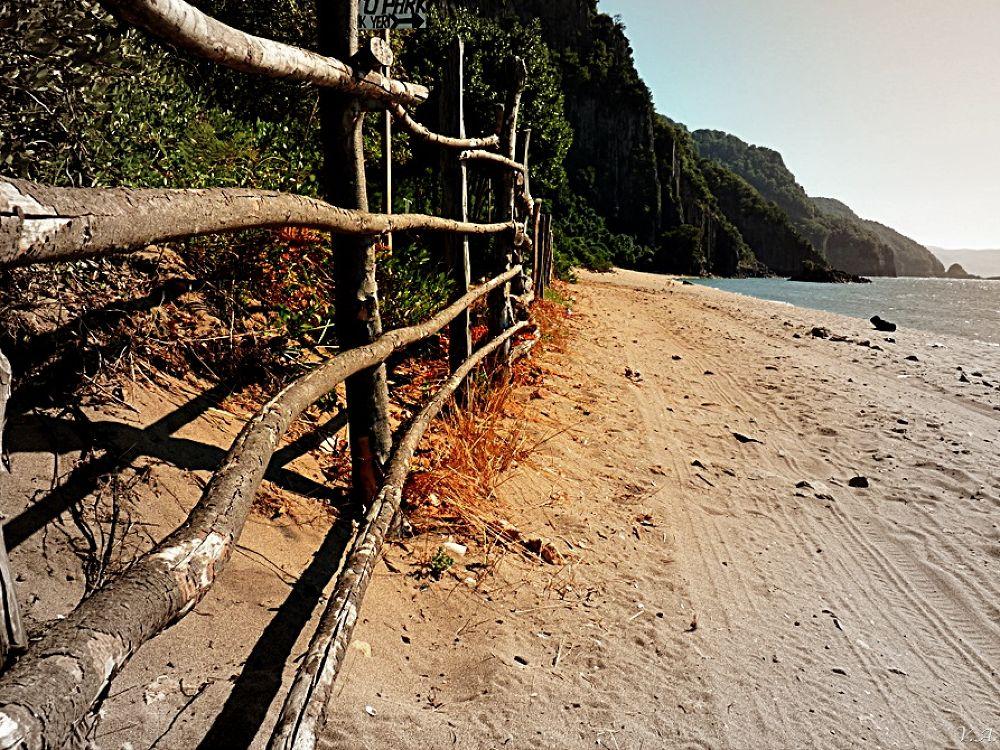fence by Volkan  AYIRIR