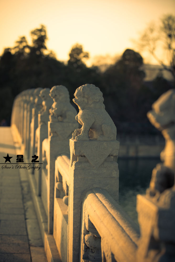 Stone lions-Summer Palace-Peking-China by Yongwei Zhao
