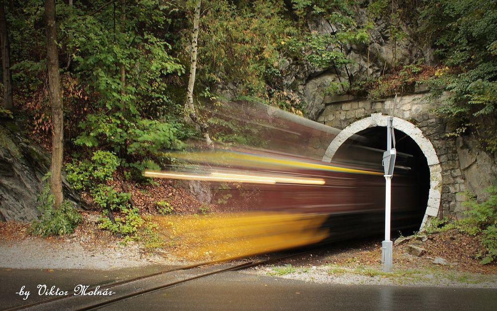 Speed.....! by Viktor Molnár