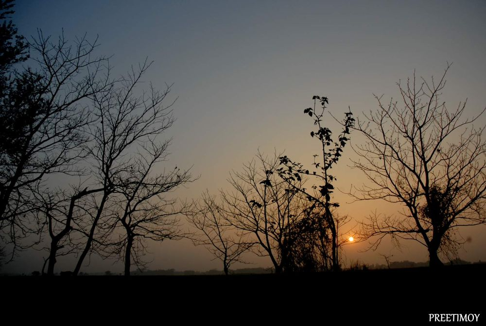 ARU_0361 Sun Set in Winter. by Preetimoy Samadder