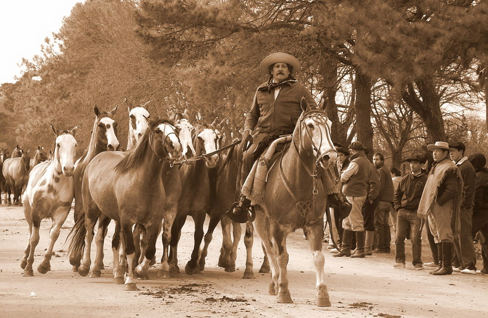 The Gaucho and his Gang of Horses. by José Javier Benítez