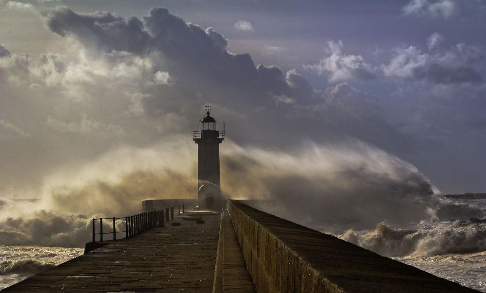 The Wave by Mischa Gerber
