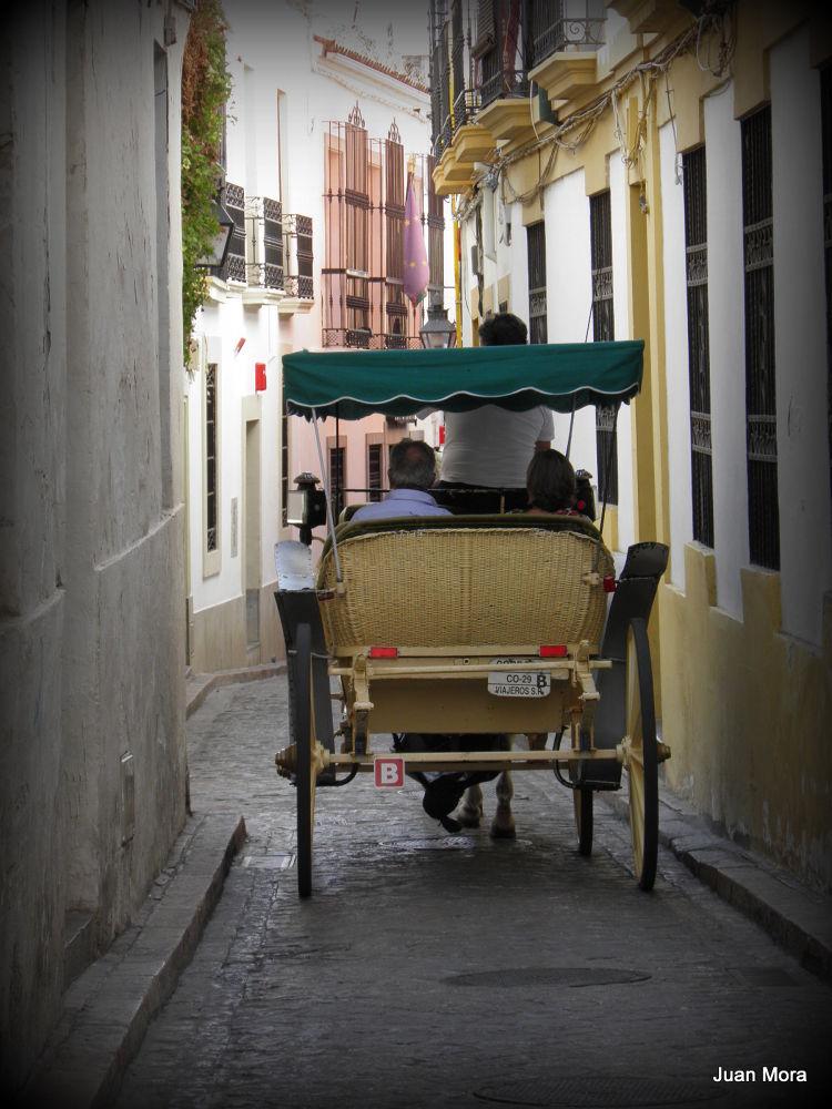 P9110127 Paseo en coche de caballos. by Juan Mora Gutierrez