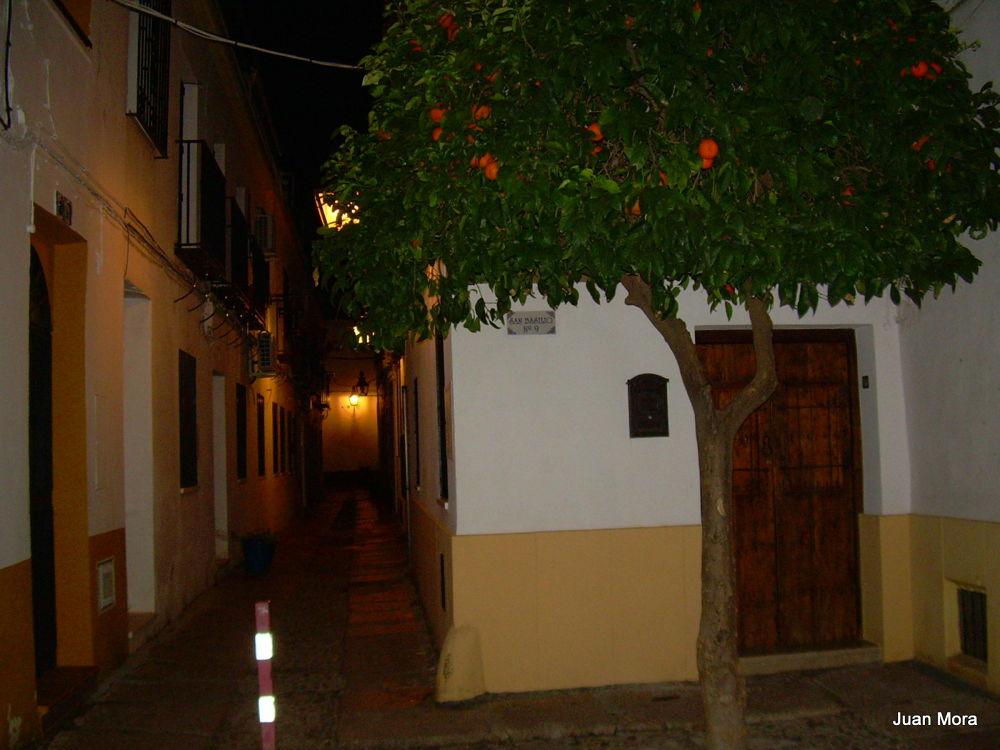 DSCN8021 San Basilio. by Juan Mora Gutierrez