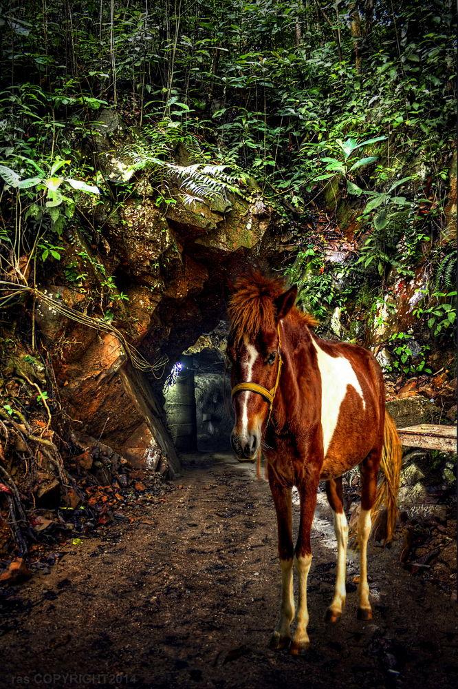Cave Guardian. by Rostam Abdul Salam