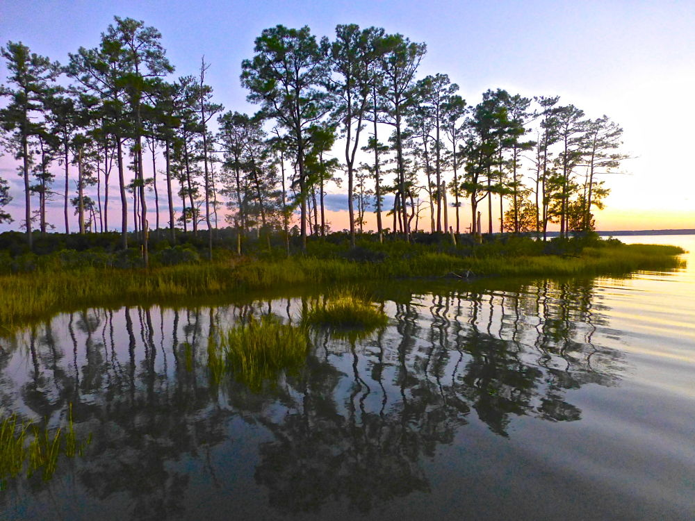 Reflections by Hunter Ten Broeck