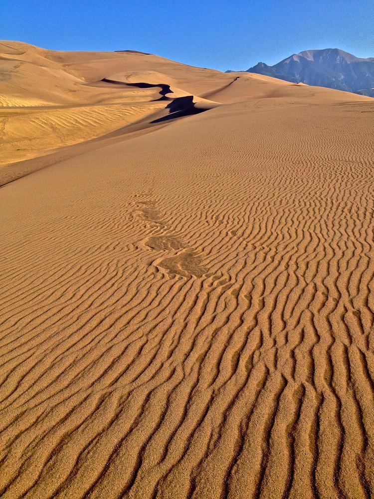 Photo in Landscape #great sand dunes national park #dunes #sand #sangre de cristo mountains #colorado #hunter ten broeck