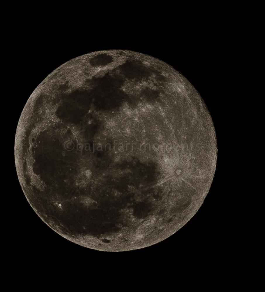 howling at the moon..... by Bajan Fari