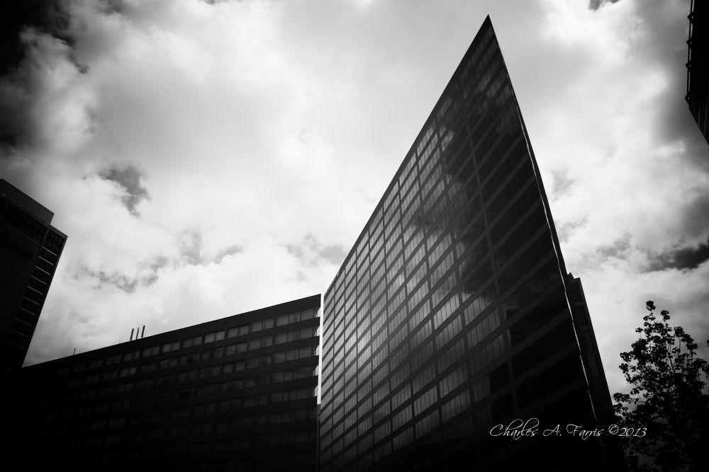 IMG_2387.jpg by Charles Farris