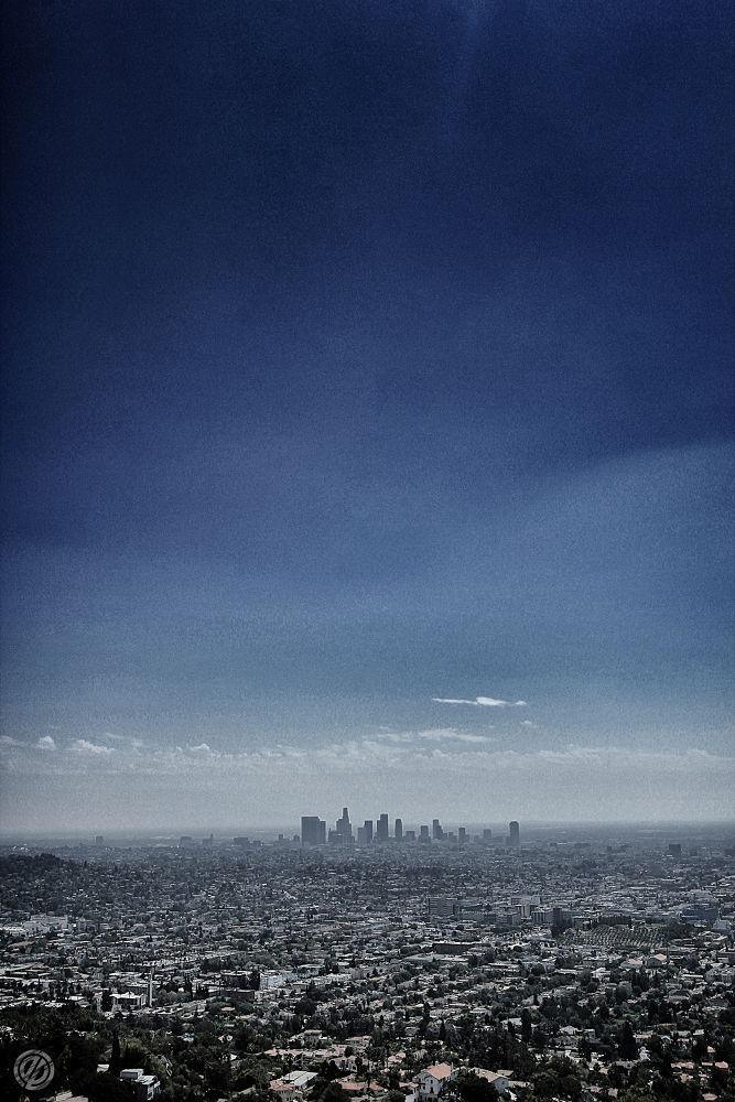 LA II by Ergo
