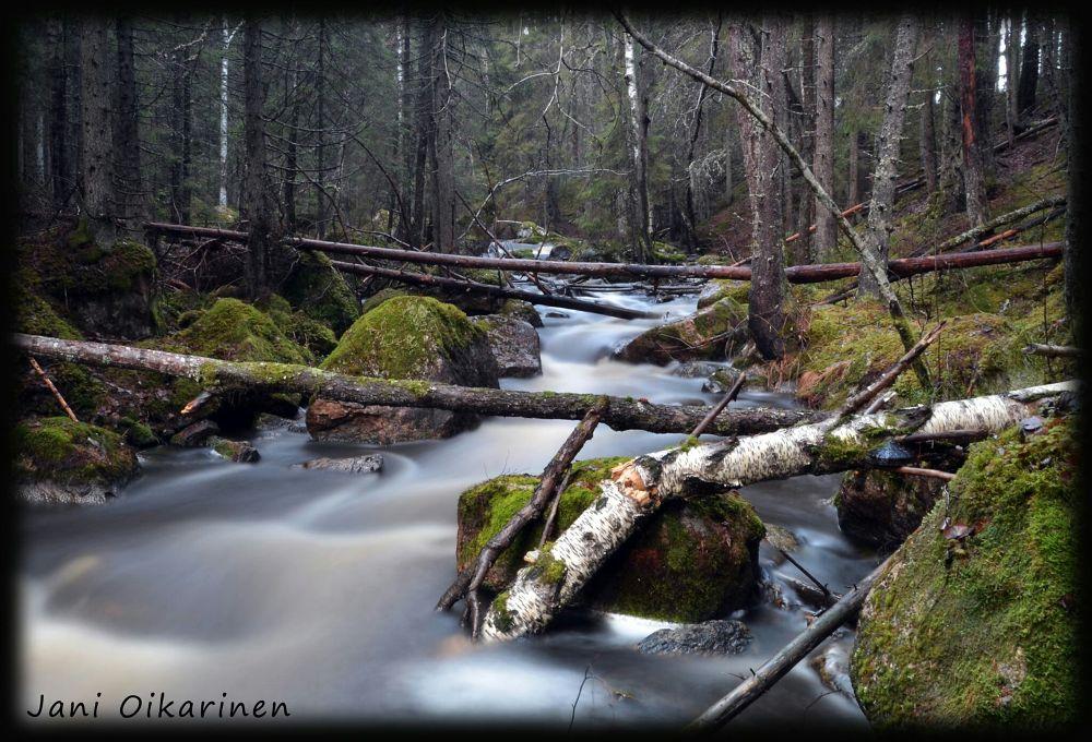 Autumn forrest stream.. by JOikarinen