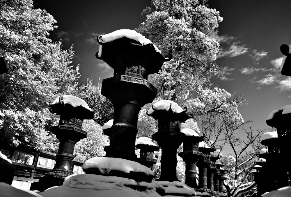 上野 by Kenji Ishida