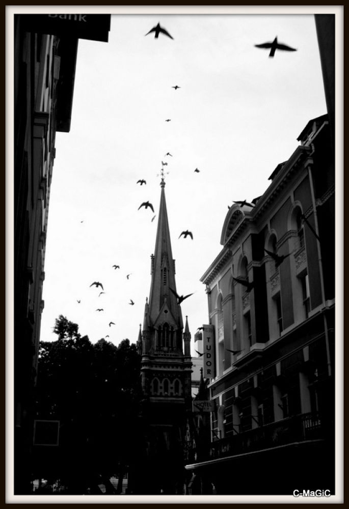 pigeons over St George's by ClaraMaGiC
