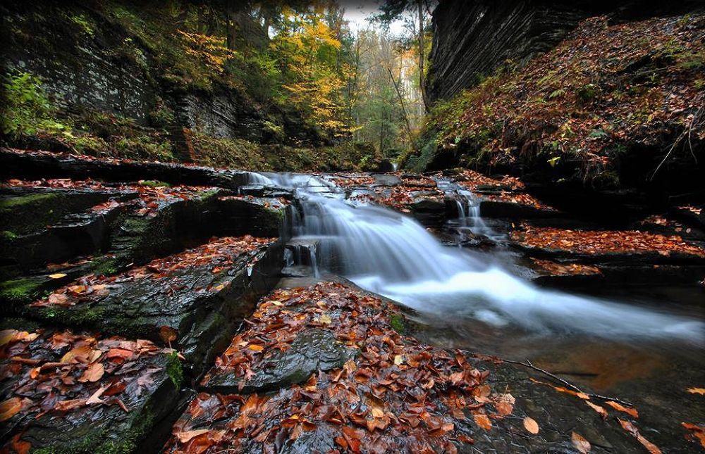 Gorge Waterfall by Cheryl Rendino