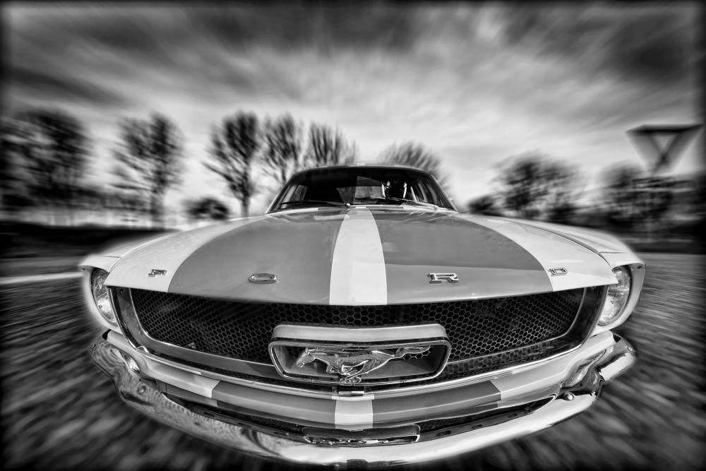 Mustang by acidezen