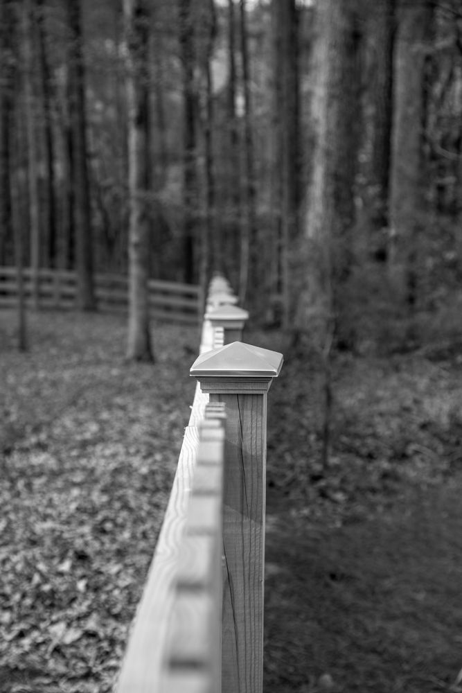Simple Fence line shadows... by Mark Streit