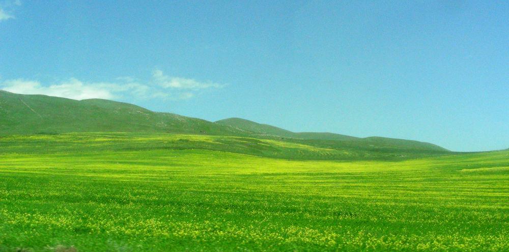 Armenia by Seize