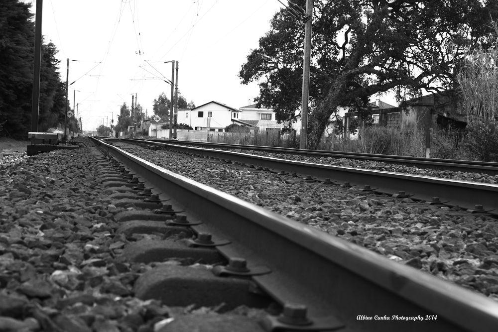 Trilhos by Albino Cunha
