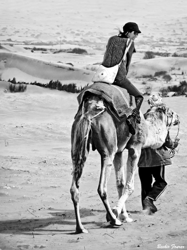 Louiza by Bachir Fourar
