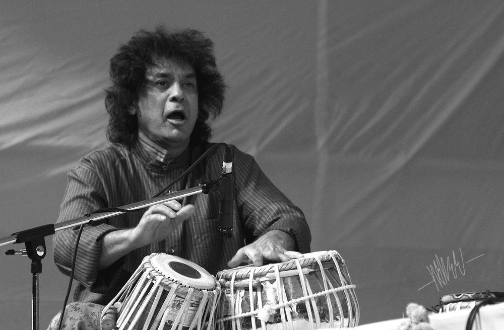 Tabla Player - Ustad Zakir Hussen - India -8 by maheshaute