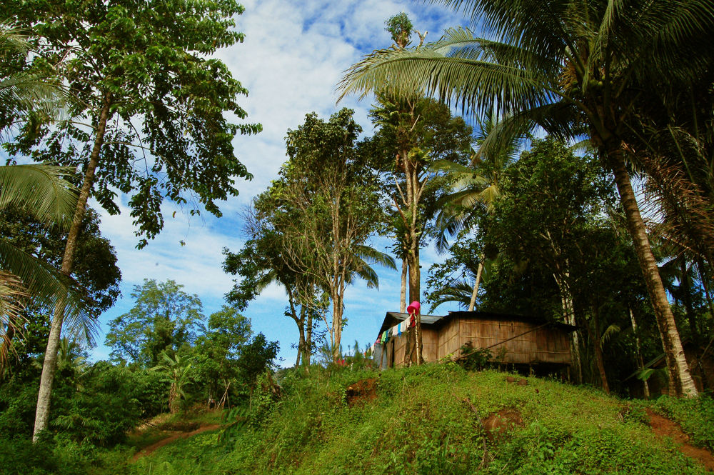 little paradise in South Borneo by Nadi