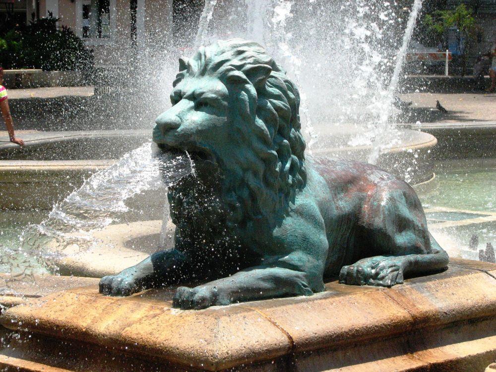 Fountain by Jimmy Gomez