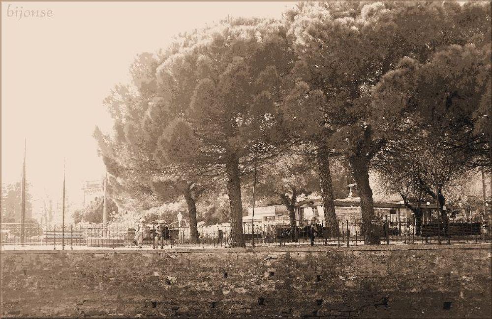 Photo in Black and White #bijonse