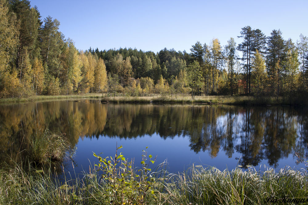 Autumn in Finland by ipa67
