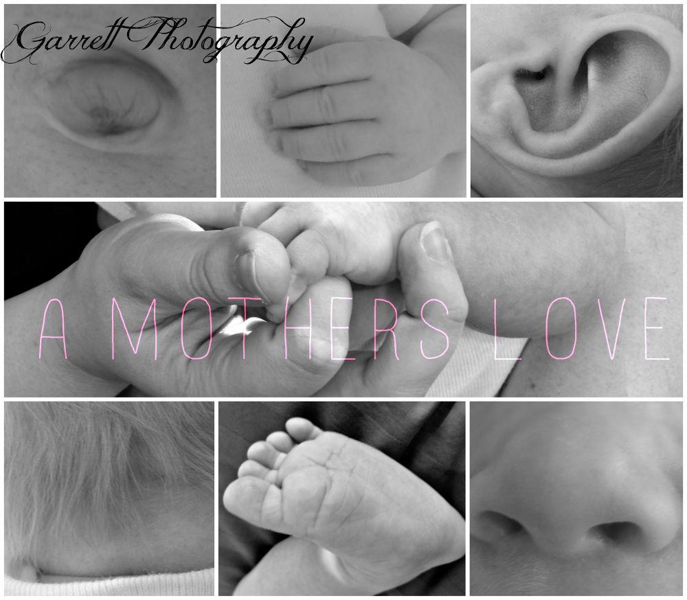 A mothers love by Alexis Garrett