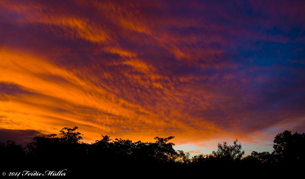 Sunset over Sabi Sand by Ferdie Muller
