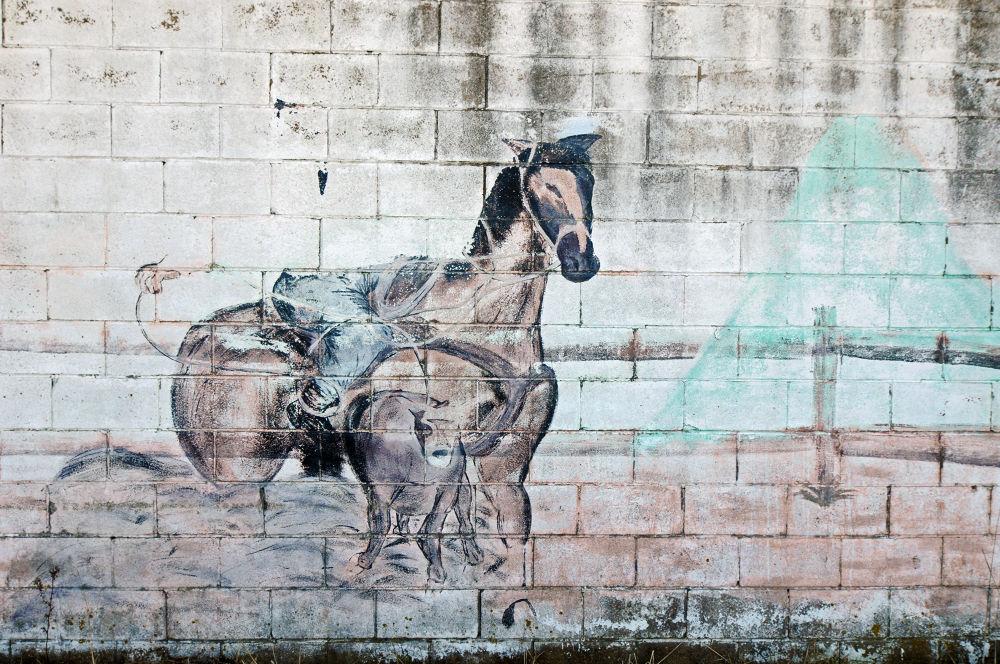 Wall Art 8 by dhphoto