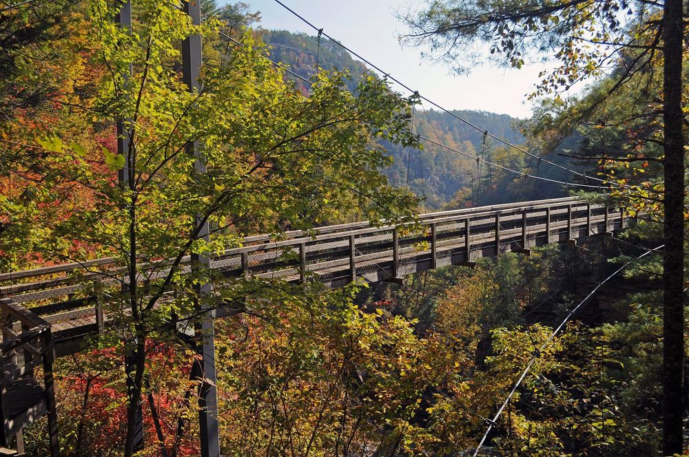 Suspended Bridge at Tallulah Gorge SP by dhphoto