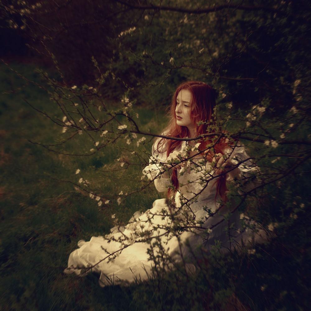 Spring by ZofiaRojek