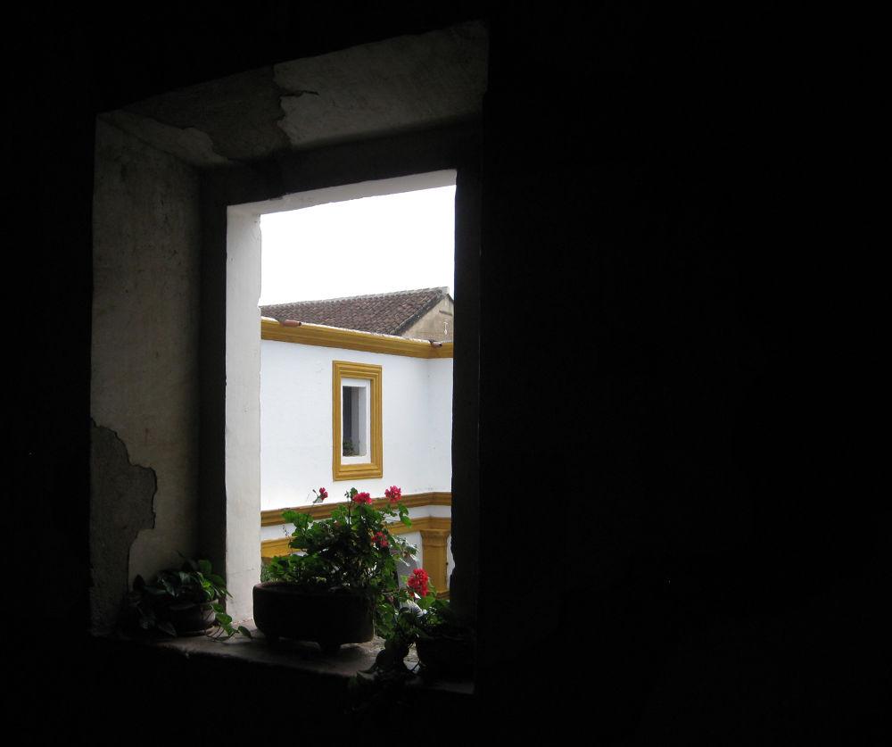 ventana antigua guatemala by Frederick Astorga