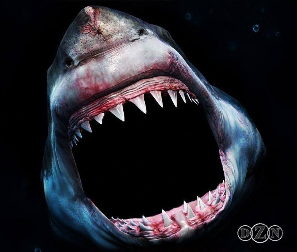 3d Portrait of The Great White Shark by DZN(Sculptor) and HERMAN CHARLES SERRANO(Painter) by DAZZAN