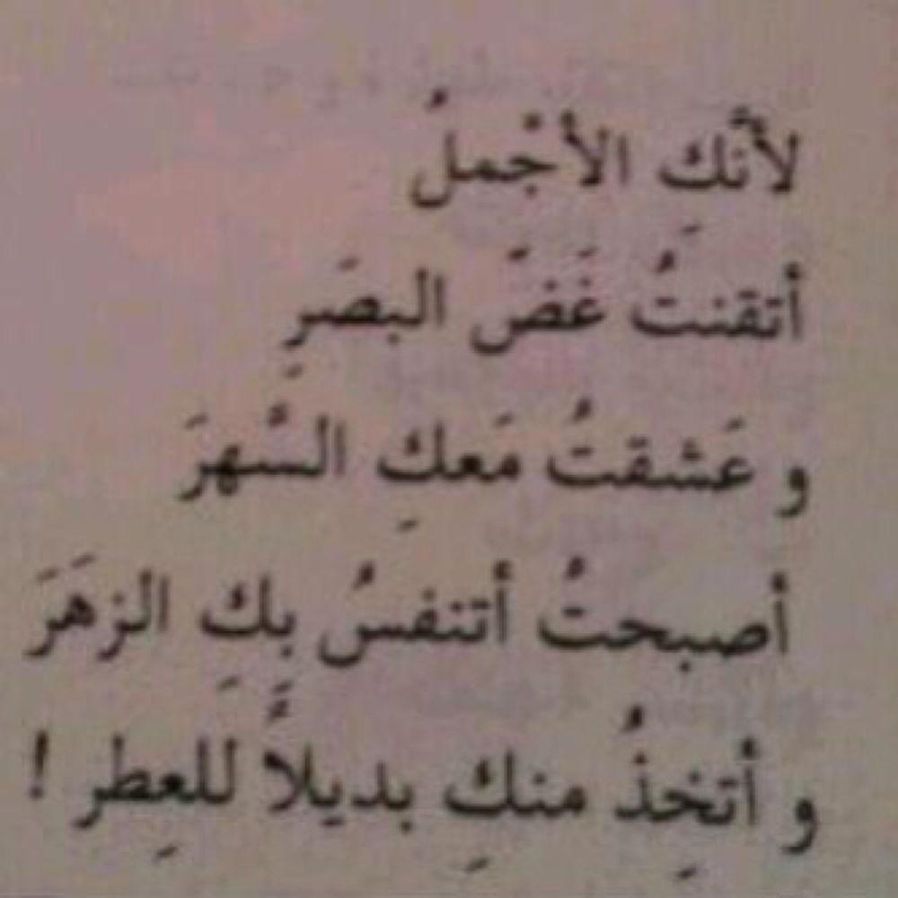 IMG_1558 by Amerah Alsharef