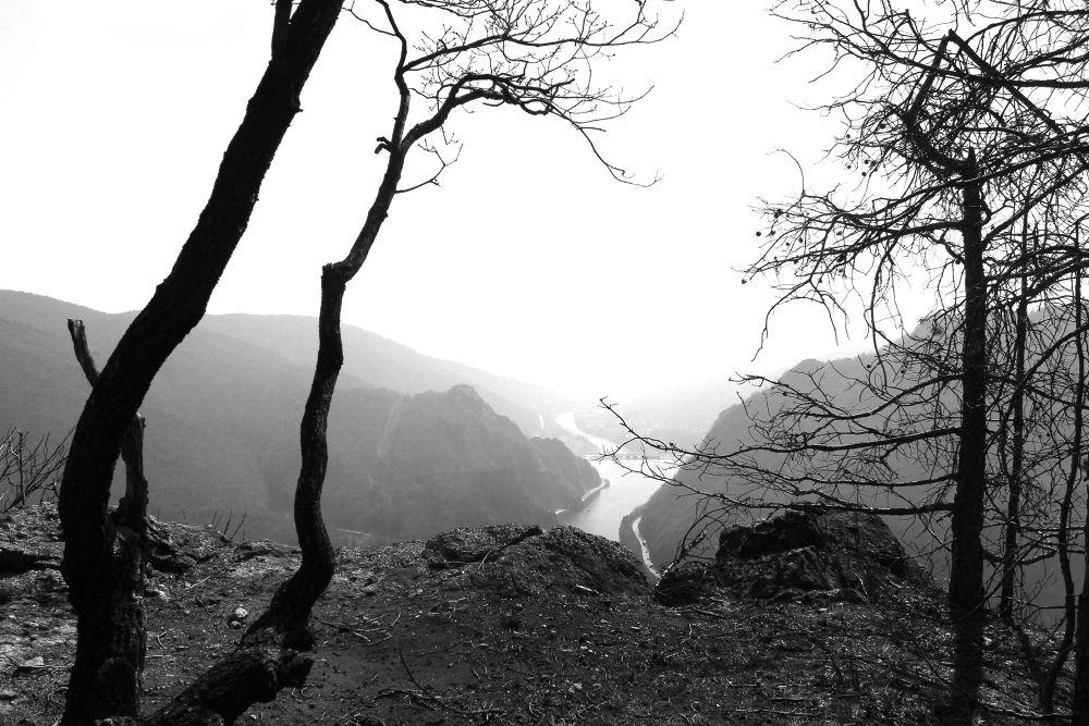 cozia mountains by Tavi Anghelus
