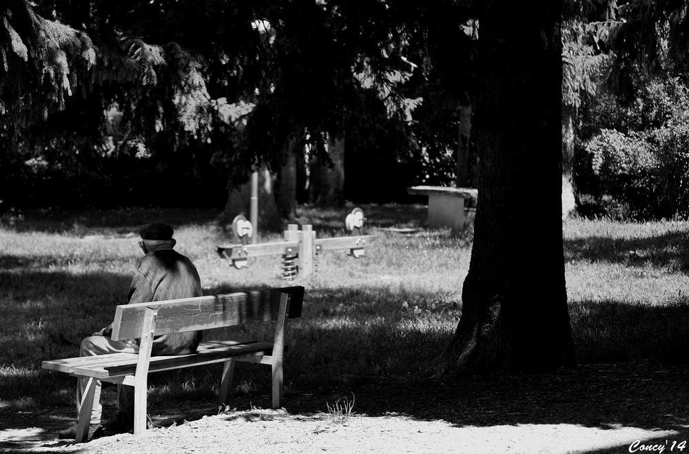 Photo in Random #pinerolo #passeggiata #giochi