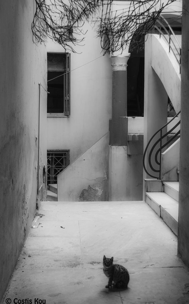 Home alone... by Costis Koufogeorgas