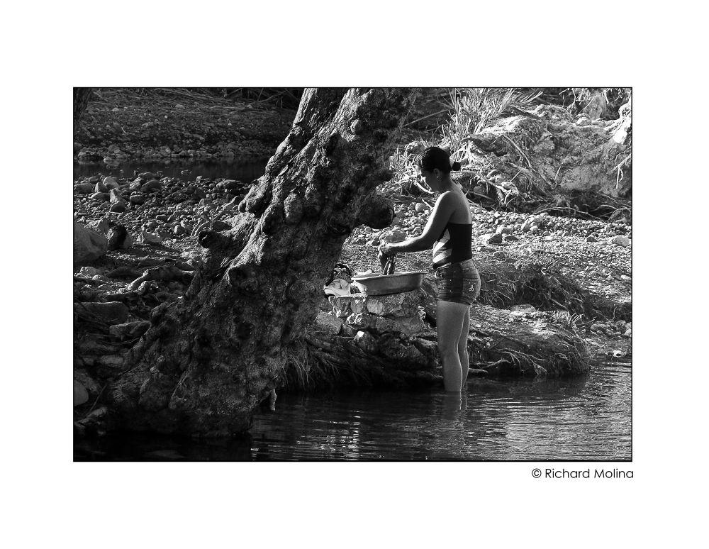 Lavandera de río by Richard_Molina
