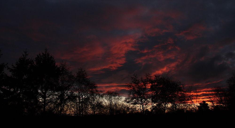 morgen by TheoHorneman