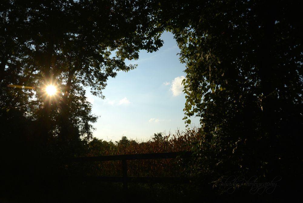 Framed Kentucky Farm by Shady Photography Studio, LLC