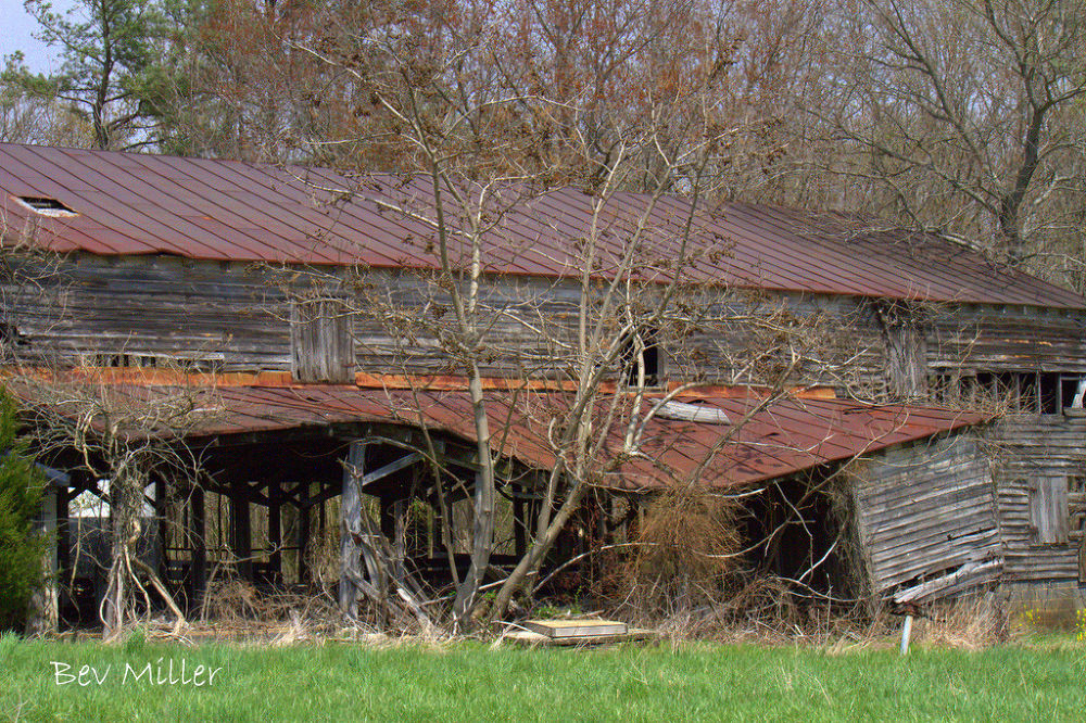 Old barn by Beverly