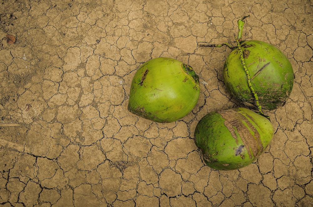 A Little Hope For Drought by jhunsanluisjr