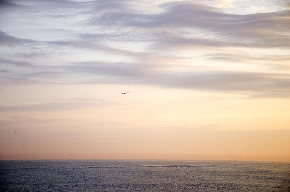 Sun Rise by Majid Tarighati