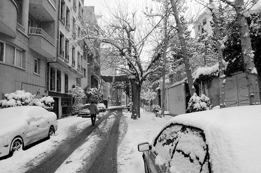 Last Snow. by Majid Tarighati